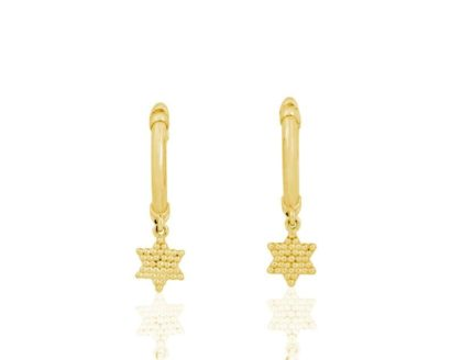 14k gold Star of David (Magen David) earrings elegant
